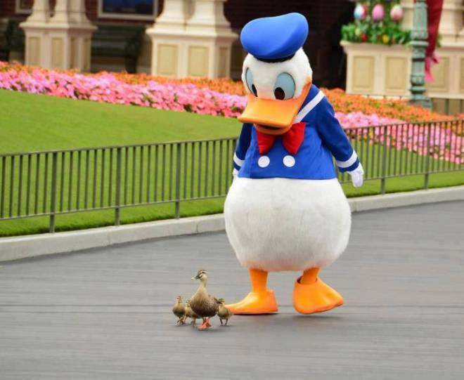 travel agent Disney