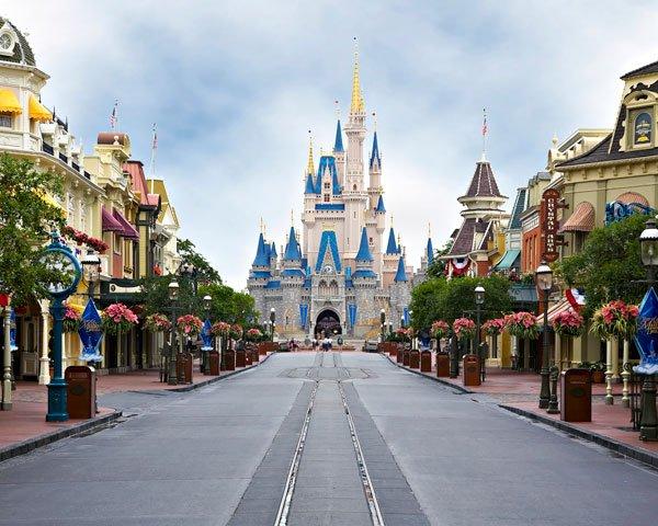 Disney Virtual Meet & Greet