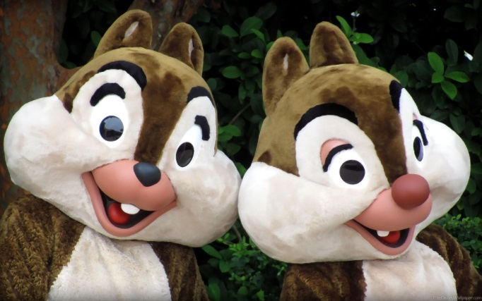 Chip and Dale at Walt Disney World